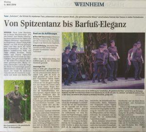 BerichtWeinheimerNachrichten2016web